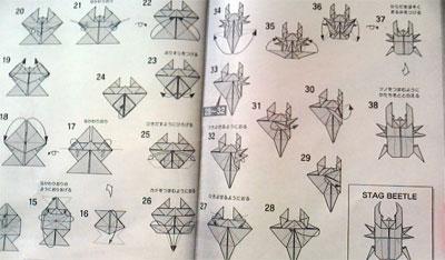 ハート 折り紙 折り紙クワガタの折り方 : kaze-suzuran.com